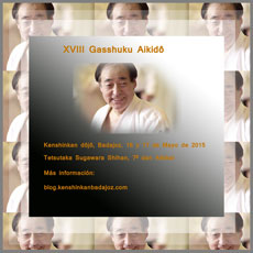 seminario-aikido-2015_p